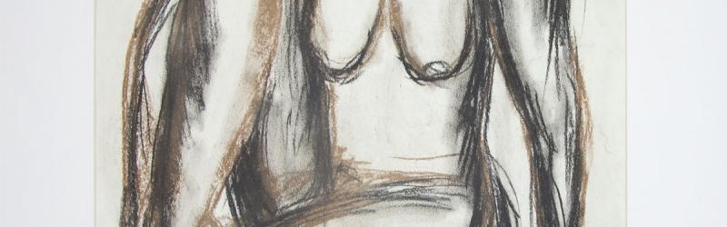 Eine Serie von Zeichnungen in Kreide